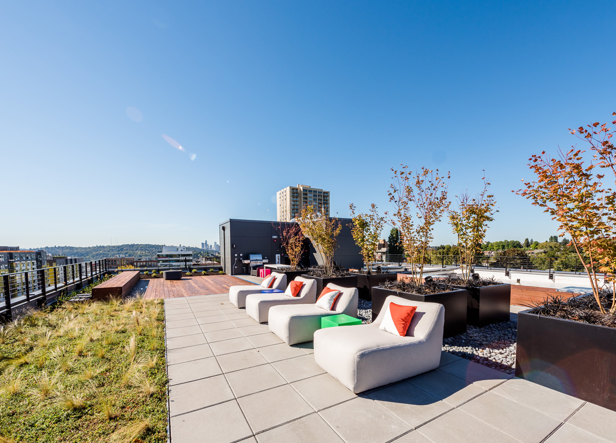 building green roof deck with Seattle and mountain views