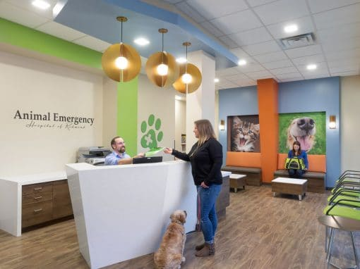 Animal Emergency Hospital of Redmond