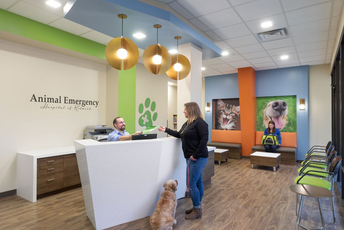 Reception and waiting room of emergency vet